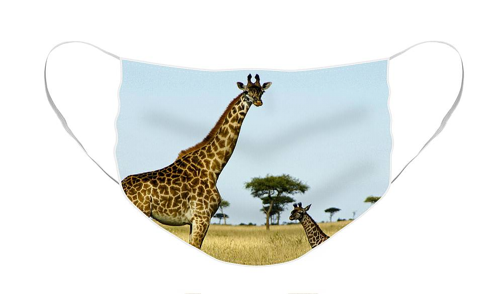 Africa Face Mask featuring the photograph Meet My Little One by Michele Burgess