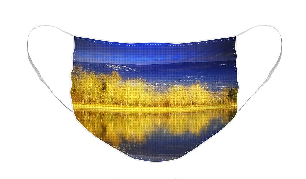 Trees Face Mask featuring the photograph Reflections in Gold by Tara Turner