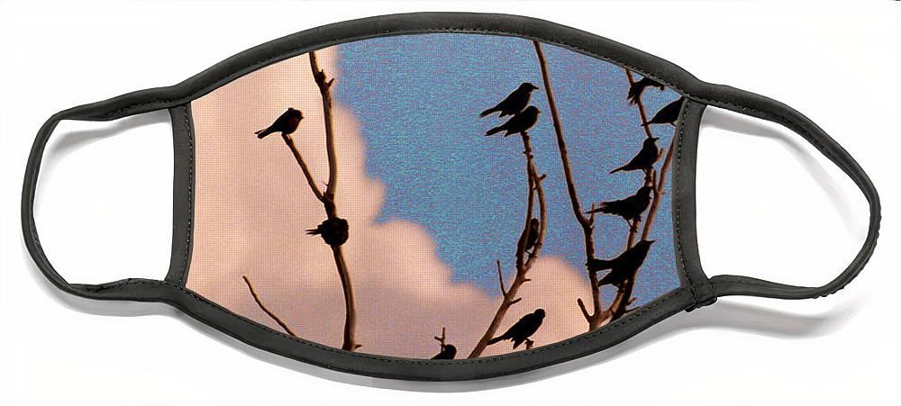 Birds Face Mask featuring the photograph 19 Blackbirds by Steve Karol