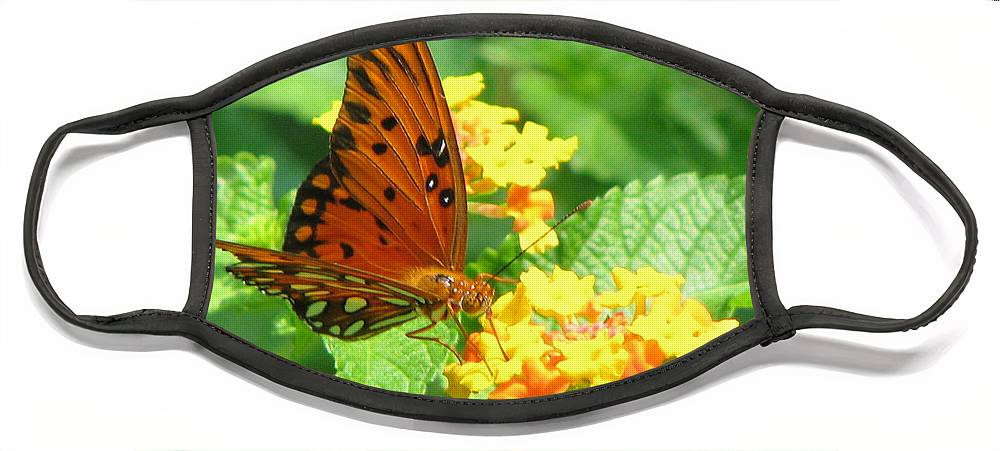 Butterfly Face Mask featuring the photograph Butterfly by Amanda Barcon