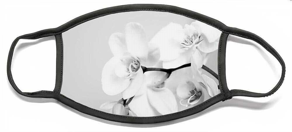 Orchid Face Mask featuring the photograph Orchid by Amanda Barcon