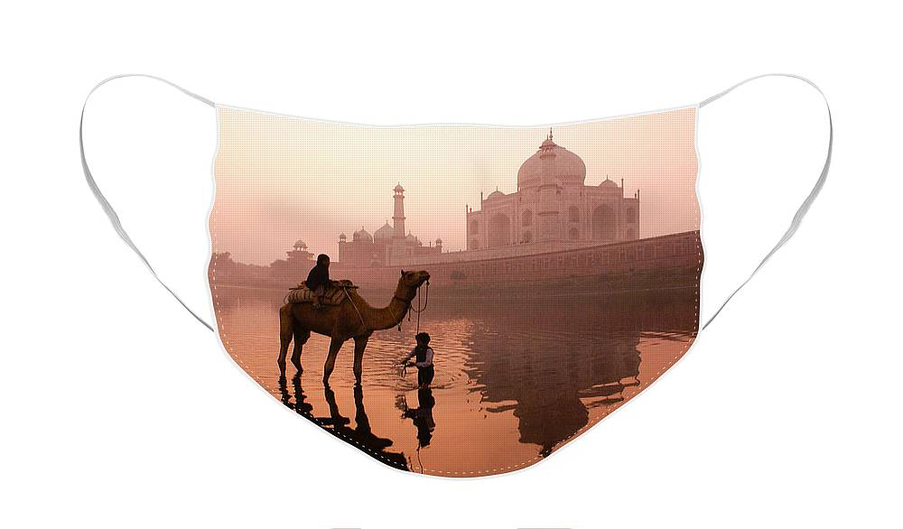Taj Mahal Face Mask featuring the photograph Taj Mahal at Dawn by Michele Burgess