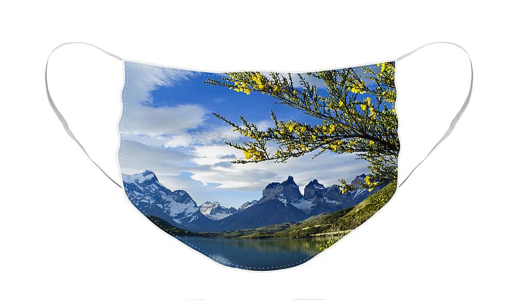 Patagonia Face Mask featuring the photograph Springtime in Torres del Paine by Michele Burgess