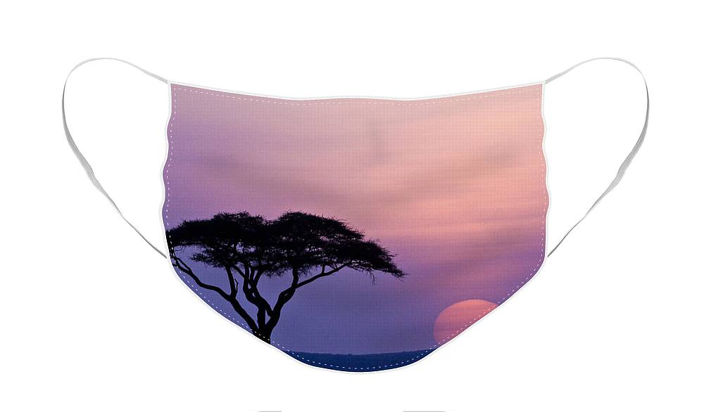 Africa Face Mask featuring the photograph African Sunrise by Michele Burgess