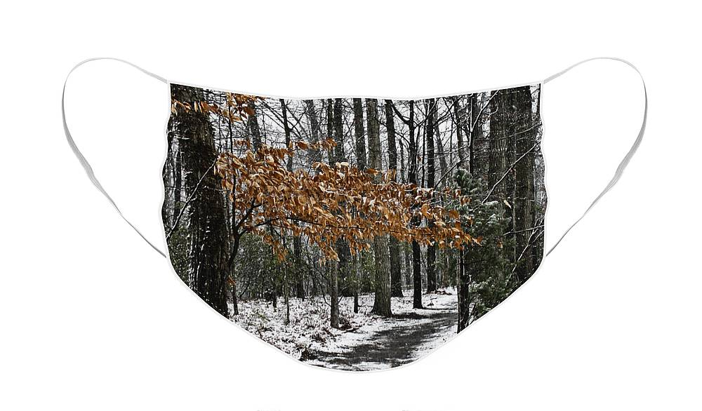 Snow Face Mask featuring the photograph A Walk in The Snow Quantico National Cemetery by Teresa Mucha