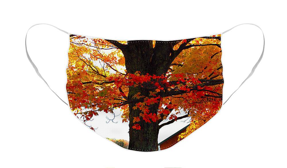 Berry Face Mask featuring the photograph Adirondack Color Show by Diane E Berry