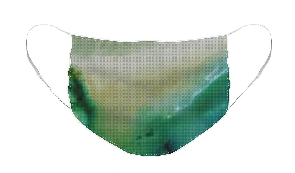 Aerial Face Mask featuring the painting Aerial Seascape by Jennifer Webb