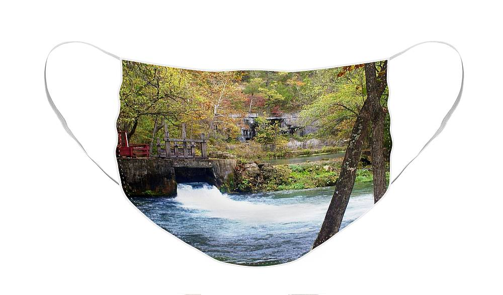 Alley Spring Face Mask featuring the photograph Alley Spring by Marty Koch