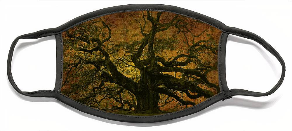 Angel Oak Face Mask featuring the photograph Angel Oak 3 Charleston by Susanne Van Hulst