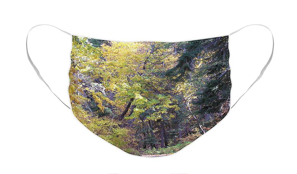 Autumn Photographs Face Mask featuring the photograph Autum Colors by Louise Magno