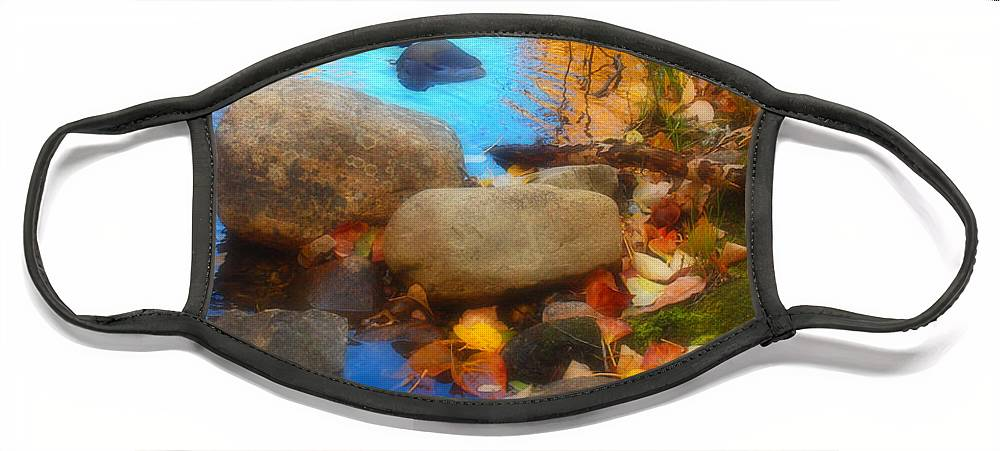 Autumn Face Mask featuring the photograph Autumn By The Creek by Tara Turner