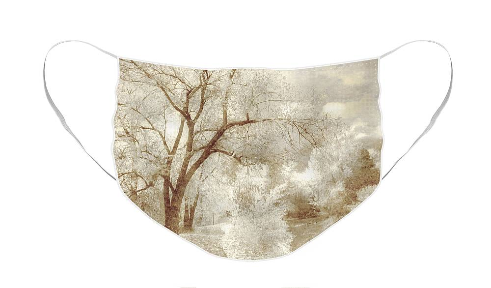 Path Face Mask featuring the photograph Autumn's Last Breath by Tara Turner
