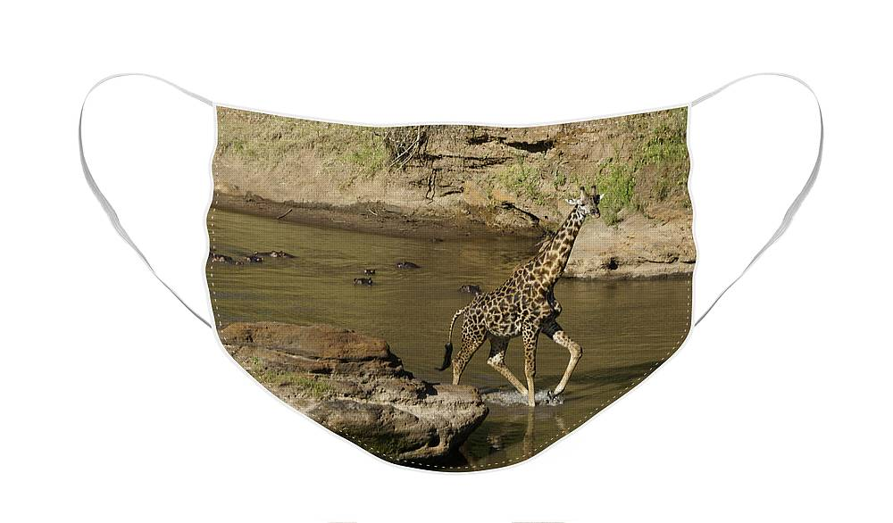 Africa Face Mask featuring the photograph Beware of Hippos by Michele Burgess