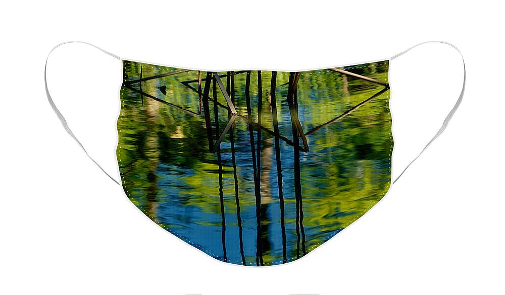 Landscape Face Mask featuring the photograph Blue and Green Pool by Iris Greenwell
