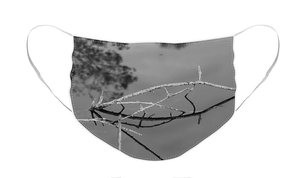 Black And White Face Mask featuring the photograph Bridges In Wood by Rob Hans