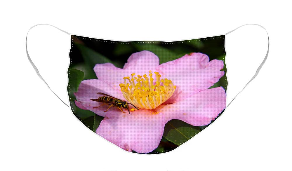 Floral Face Mask featuring the photograph Camilia Bee by Paul Anderson