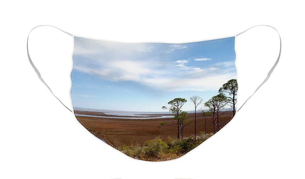Landscape Face Mask featuring the photograph Carrabelle Salt Marshes by Rich Leighton