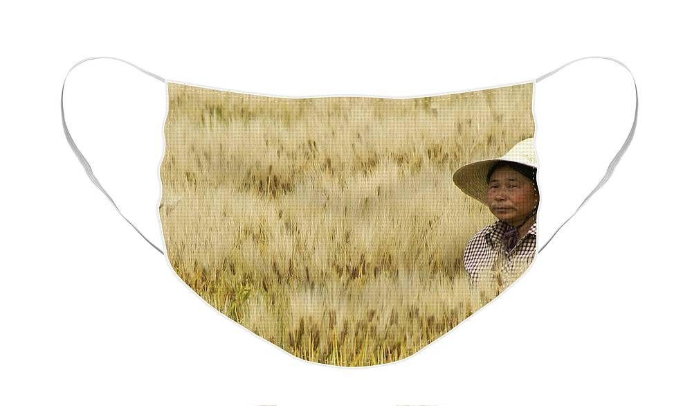Asia Face Mask featuring the photograph Chinese Rice Farmer by Michele Burgess