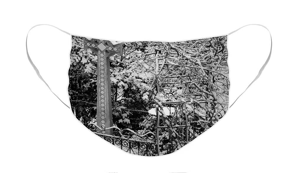Christmas Face Mask featuring the photograph Christmas Snow in the Garden by Teresa Mucha