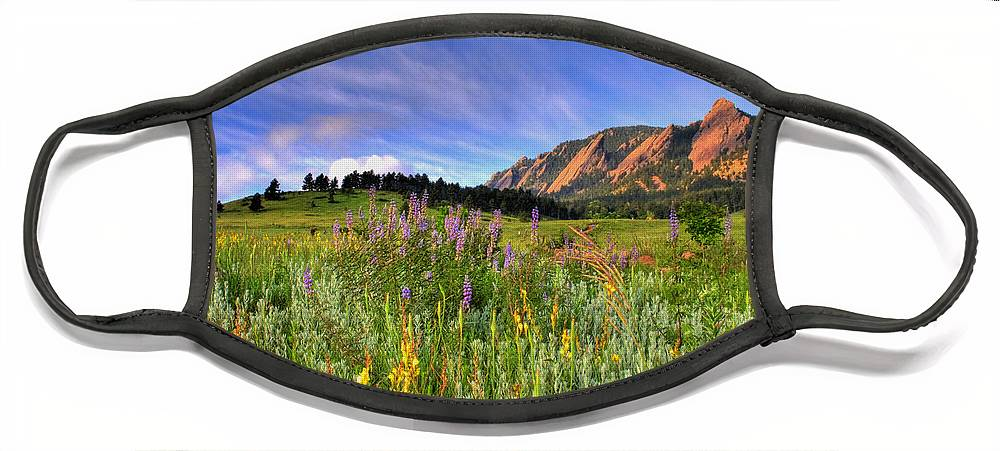 Colorado Face Mask featuring the photograph Colorado Wildflowers by Scott Mahon