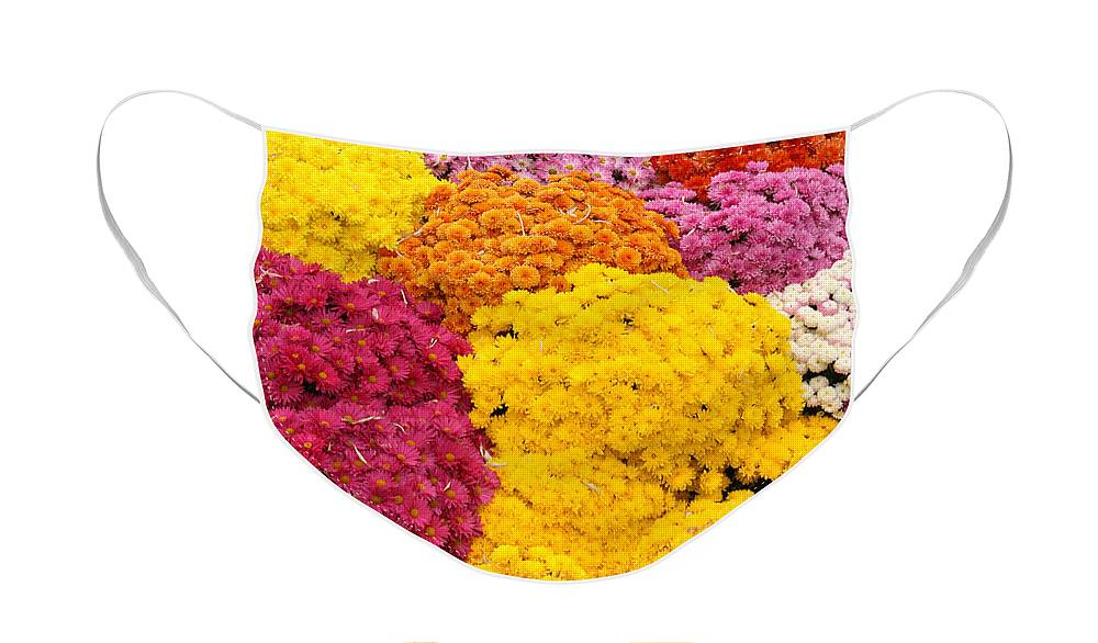 Flowers Face Mask featuring the photograph Colorful Mum Flowers Fine Art Abstract Photo by James BO Insogna