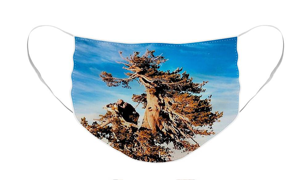 Diane Berry Face Mask featuring the photograph Crater Lake Winds by Diane E Berry