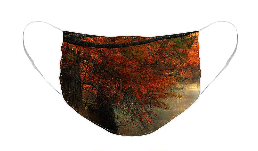 Misty Forest Face Mask featuring the photograph Cypress Trees in Red by Iris Greenwell