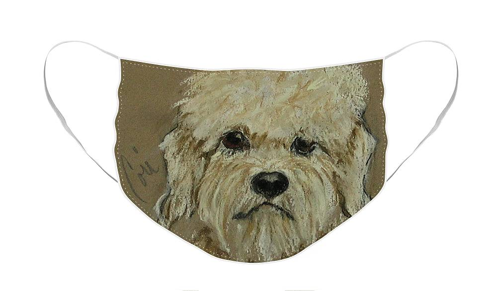 Dandie Dinmont Terrier Face Mask featuring the drawing Dandie by Cori Solomon