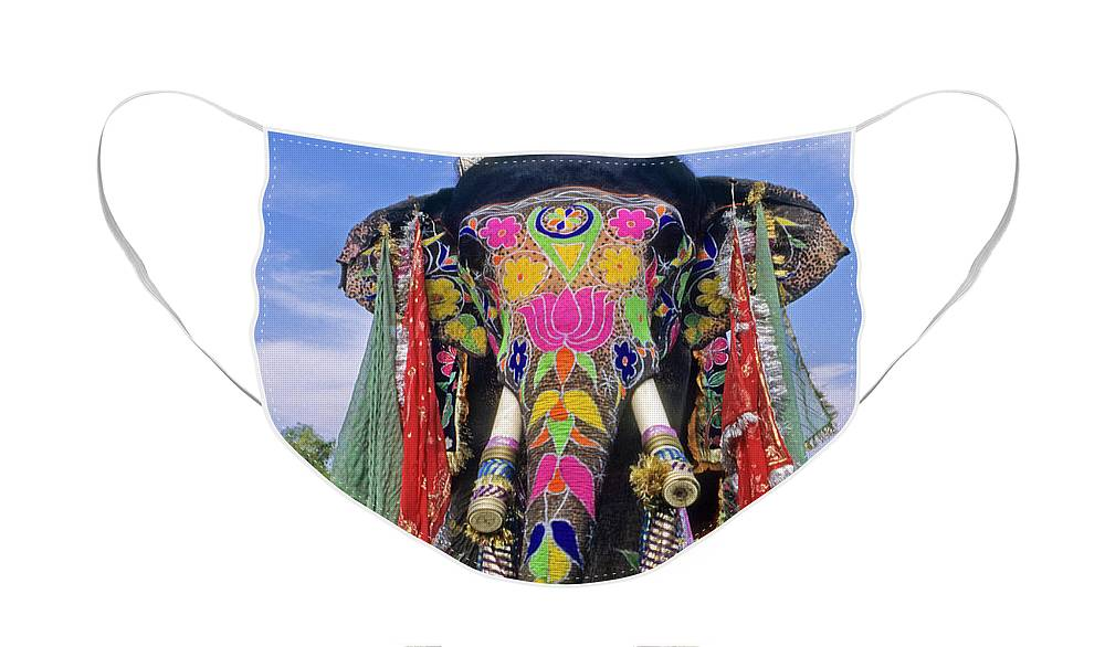 Asia Face Mask featuring the photograph Decorated Indian Elephant by Michele Burgess