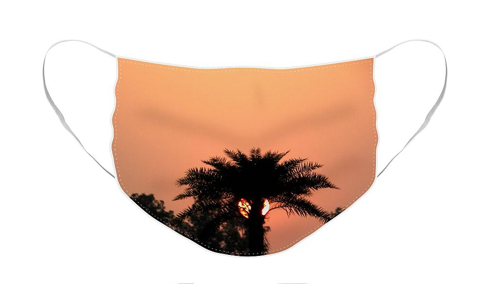 Sunrise Face Mask featuring the photograph Desert Rose by Aim to Aimless