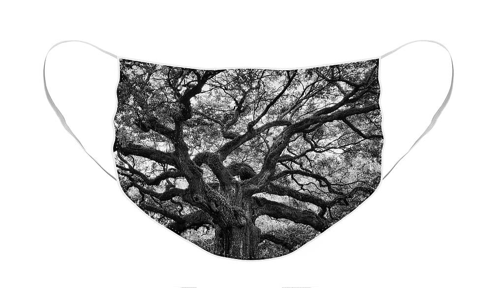 Angel Oak Face Mask featuring the photograph Dramatic Angel Oak in Black and White by Carol Groenen