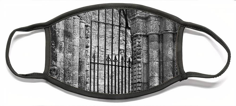 Irish Face Mask featuring the photograph Entrance to Cong Abbey Cong Ireland by Teresa Mucha
