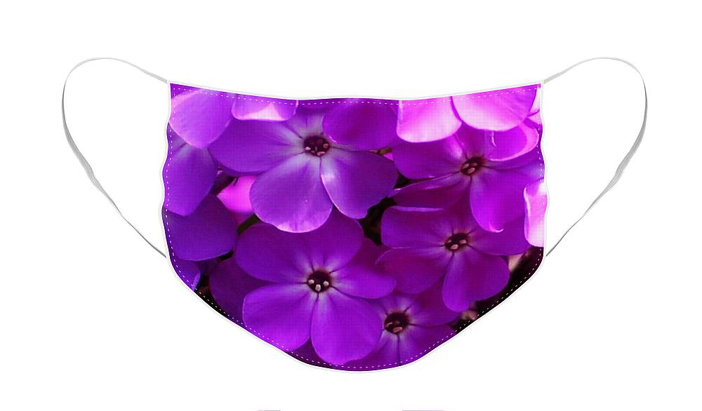 Floral Face Mask featuring the photograph Floral Glory by David Lane