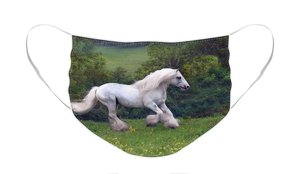 Horse Face Mask featuring the photograph Free Billy by Fran J Scott