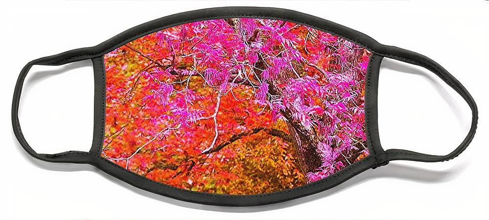 Fuschia Face Mask featuring the photograph Fuschia Tree by Nadine Rippelmeyer