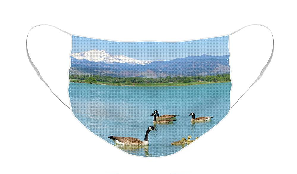 Mcintosh Lake Face Mask featuring the photograph Geese Goslings and The Twin Peaks - Longs and Meeker by James BO Insogna