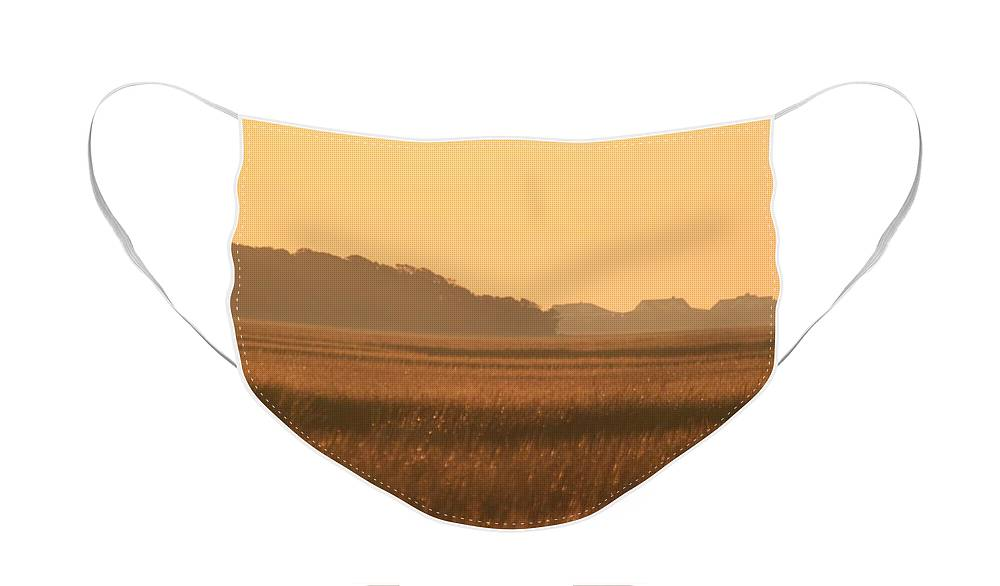 Marsh Face Mask featuring the photograph Golden Marshes by Nadine Rippelmeyer