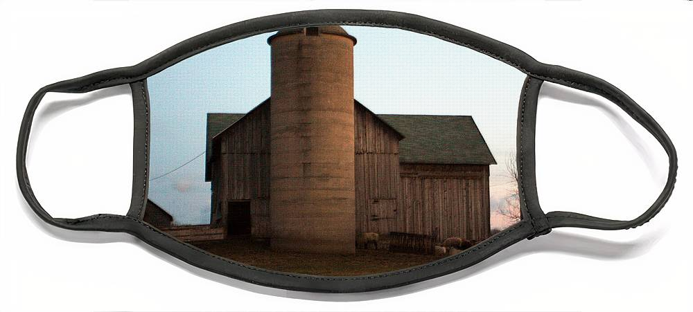 Barn Face Mask featuring the photograph Grazing at Dawn by Tim Nyberg