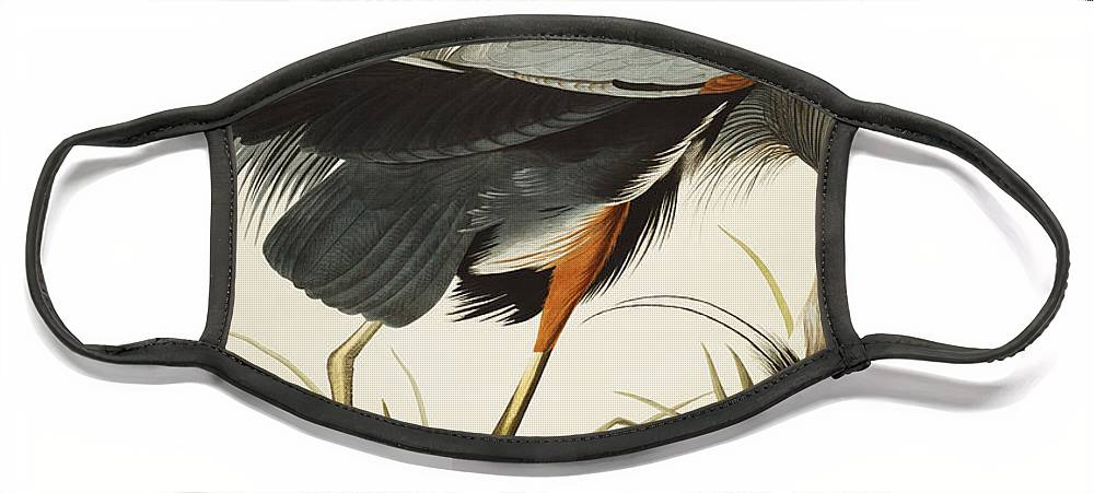 Great Blue Heron Face Mask featuring the drawing Great Blue Heron by John James Audubon