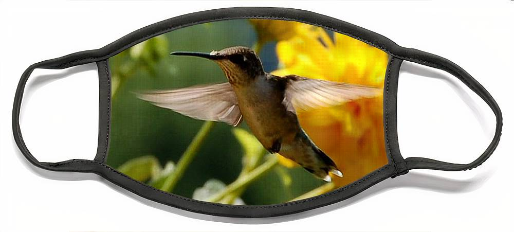 Diane Berry Face Mask featuring the photograph Hummer by Diane E Berry