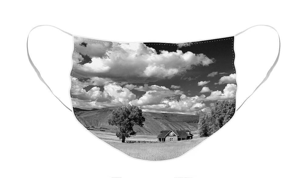 Diane Berry Face Mask featuring the photograph Jackson Hole Elk Refuge by Diane E Berry