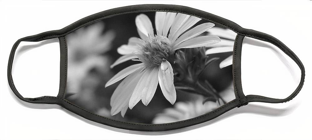 Face Mask featuring the photograph Just Black And White by Luciana Seymour