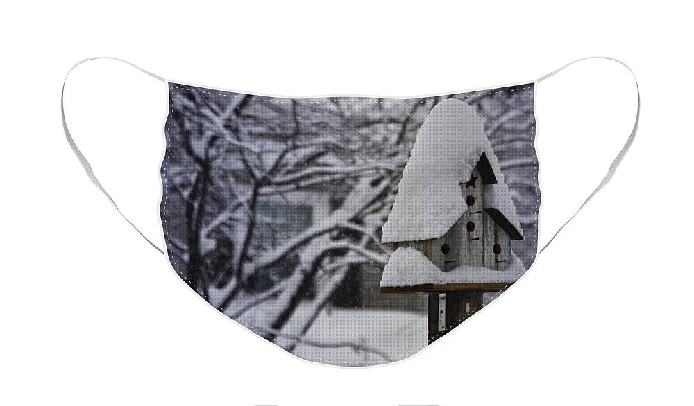 Snow Face Mask featuring the photograph Let It Snow by Teresa Mucha