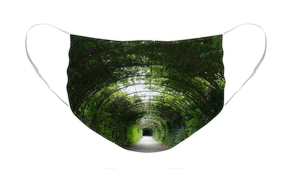 Arbor Face Mask featuring the photograph Mirabell Garden Arbor by Carol Groenen