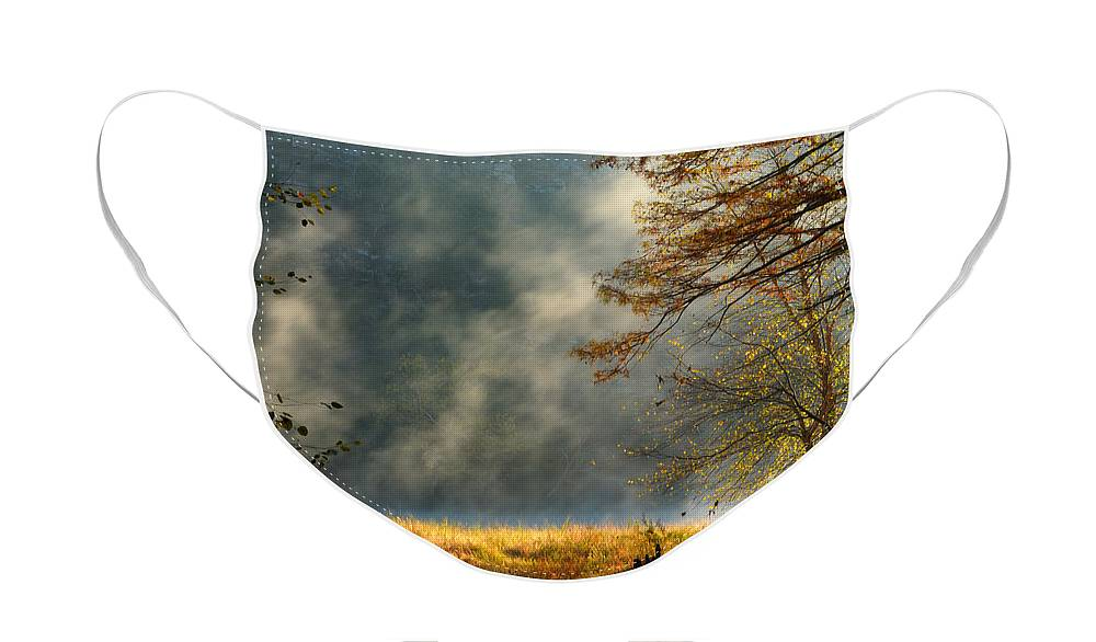 Landscape Face Mask featuring the photograph Misty Morning in the Forest by Iris Greenwell