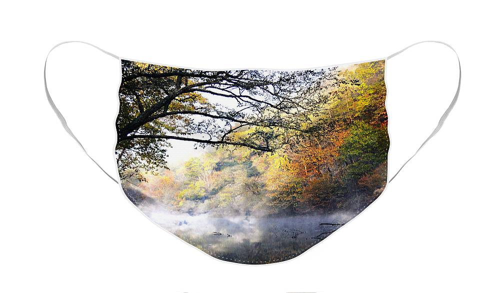 Current River Face Mask featuring the photograph Misty Morning on the Current by Marty Koch
