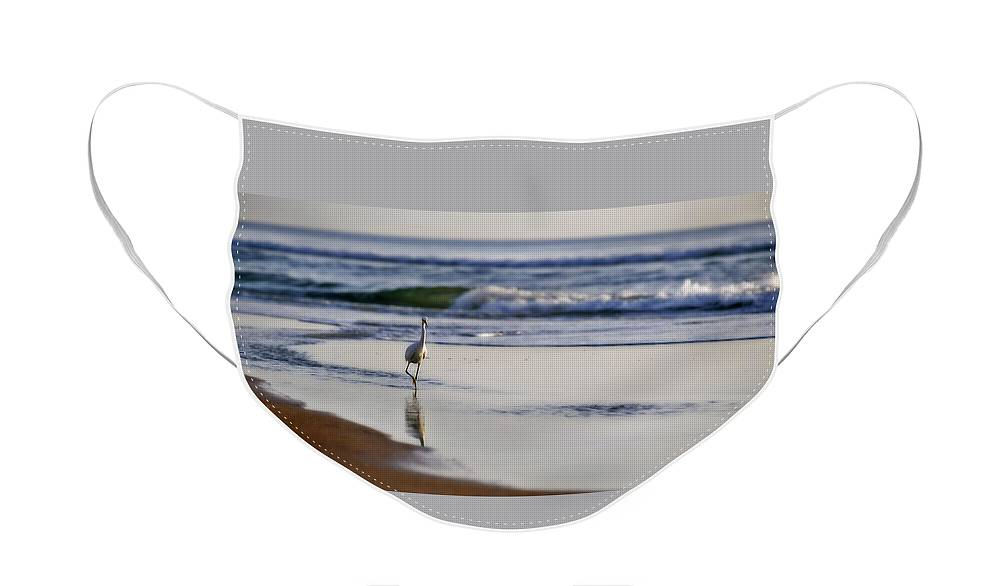 Bird Face Mask featuring the photograph Morning Walk At Ormond Beach by Steven Sparks