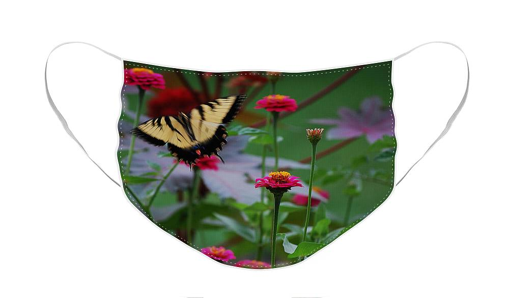 Butterfly Face Mask featuring the photograph Move on. by Robert Meanor