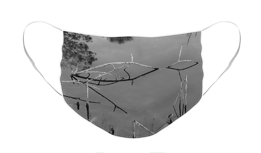 Black And White Face Mask featuring the photograph Natures Bridge by Rob Hans