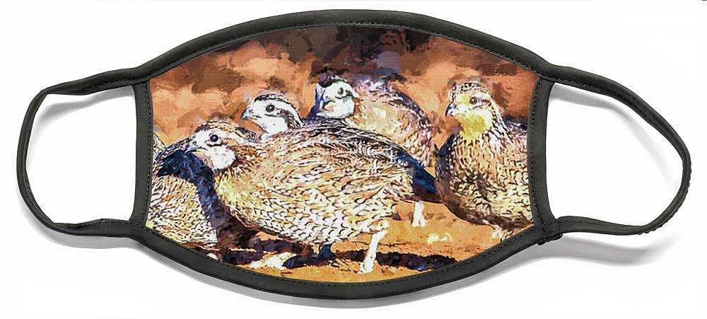 Northern Bobwhite Face Mask featuring the digital art Northern Bobwhite Digital Art by Carol Fox Henrichs